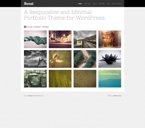 15 Perfect WordPress Portfolio Themes For Creatives