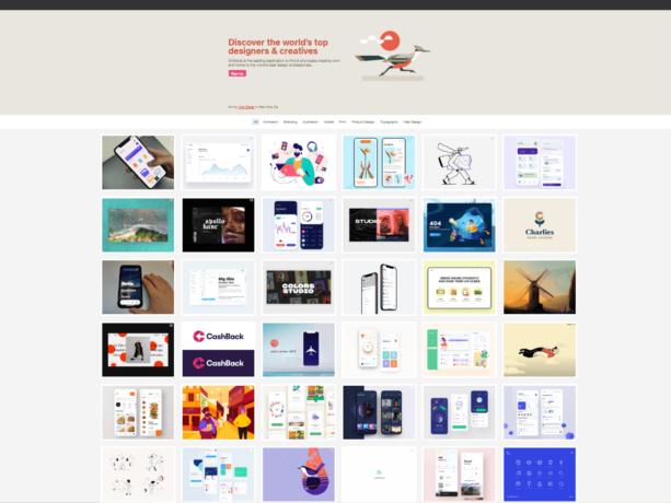 social media website designs