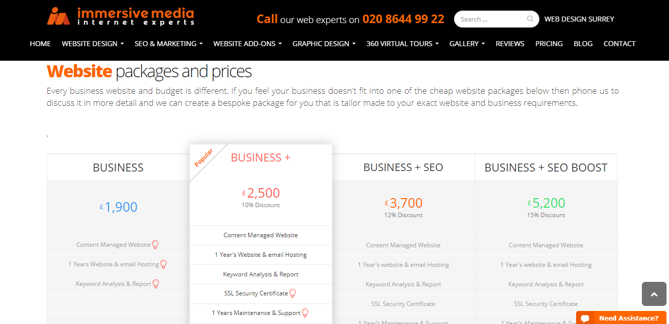 Immersive Media's website packages and prices