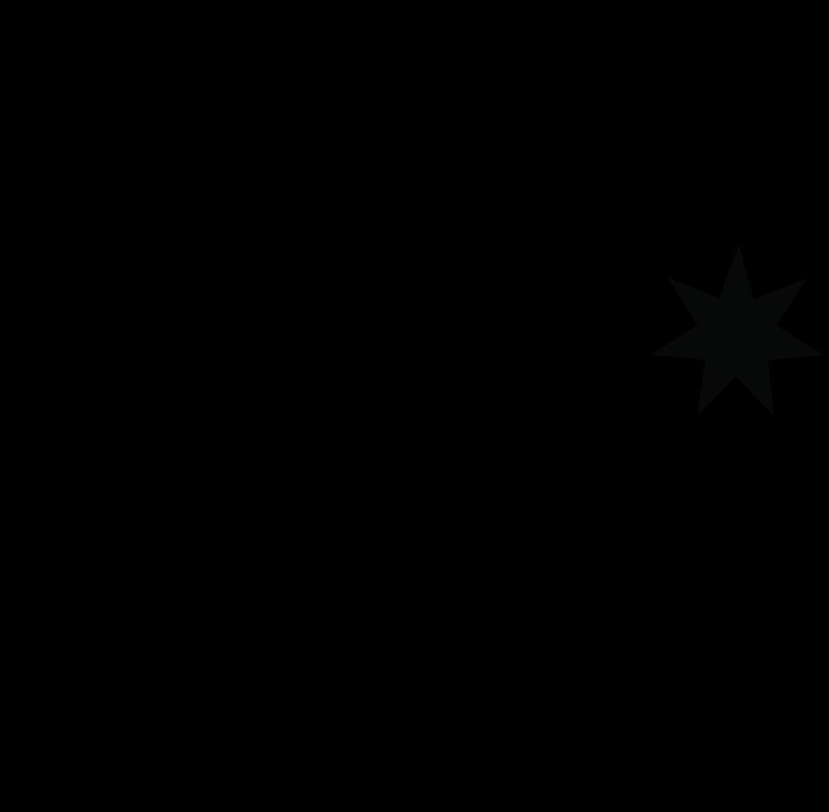DC Shoe Co monogram logo